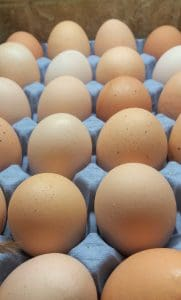 Superfoods – Benefits Of Eggs